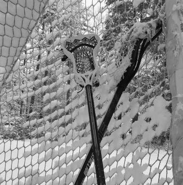 Snow Sticks